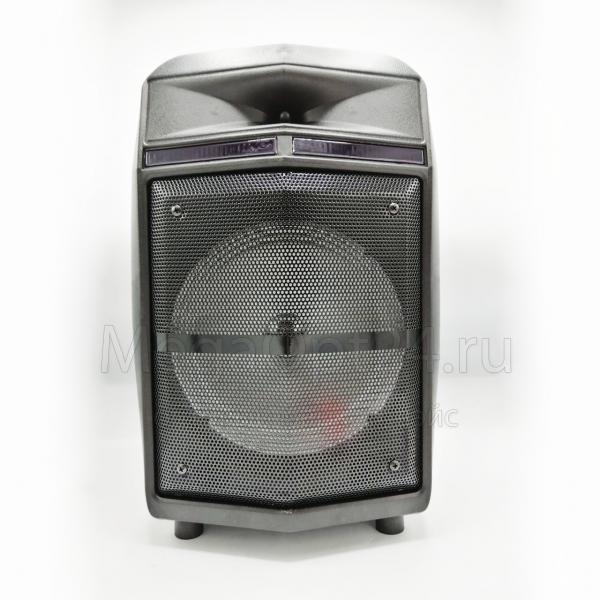 Портативная акустическая система DG-1006