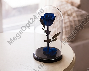 Роза в колбе Премиум 27 см