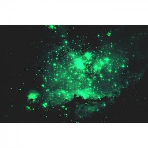 Светящаяся картина Звездное небо Люми-Зуми формата А3/Картина для интерьера