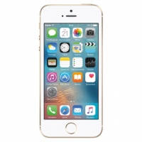 Смартфон Apple iPhone 5s Gold16Gb (ref)