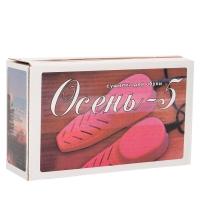 Электрическая сушилка для обуви Осень 5