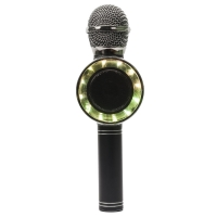 Караоке-микрофон WSTER WS-668