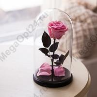 Роза в колбе Премиум 25 см