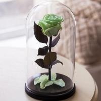 Роза в колбе Кинг 30 см